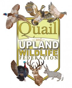 Quail and Upland WF